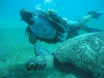 Do you wanna dive with giant turtles in Red Sea? Come & join us www.newsonbijou.com and get amazing DIVING day in Hurghada (Red Sea, Egypt)rGET WET! See you under the water :)