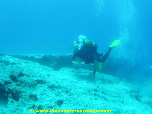 diving_at_fuerteventura.jpg