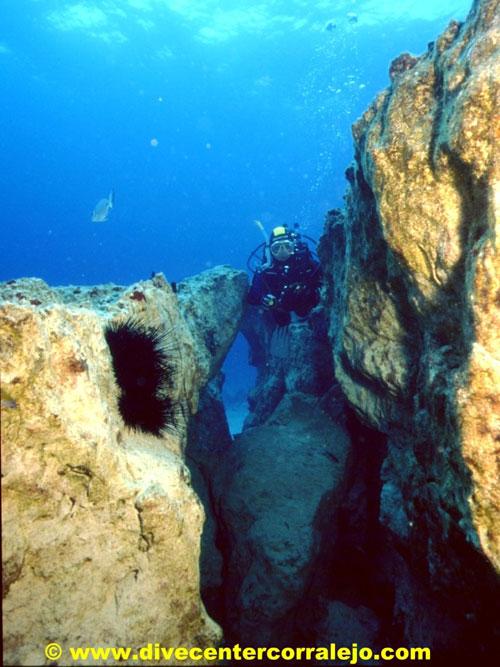 swimthroughs_fuerteventura.jpg