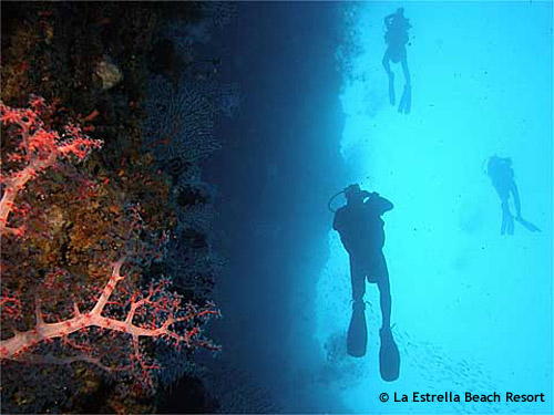divers_abseiling_down_wall.jpg