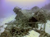 This wreck lies between 39 - 55 metres, as you can see the visibility is usually 30-40 metres. Always lots of roncadores or more commonly known as grunts, the occasional ray and grouper.