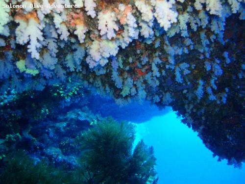 hanging_gardens.jpg