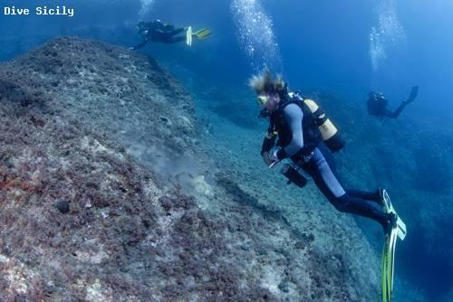 mermaidrock.jpg